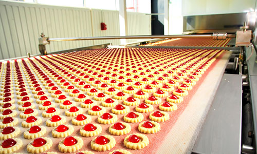 cookies-in-processing-factory_500x300